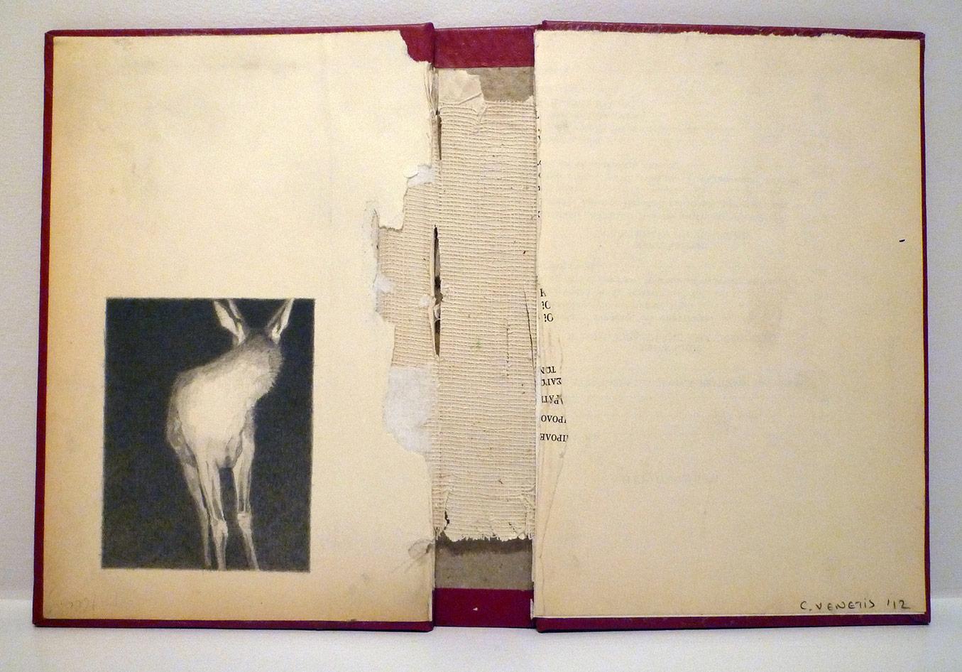 Christos VENETIS. Anemic Archives Series, 2013-2016. Lápizsobre portada usadas 21.5 x 30cm.