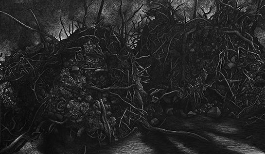 Julio BLANCAS. Sin Titulo, 2015. Grafito sobre lienzo.146x250cm